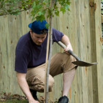 when planting a tree be sure to call 811 before you start