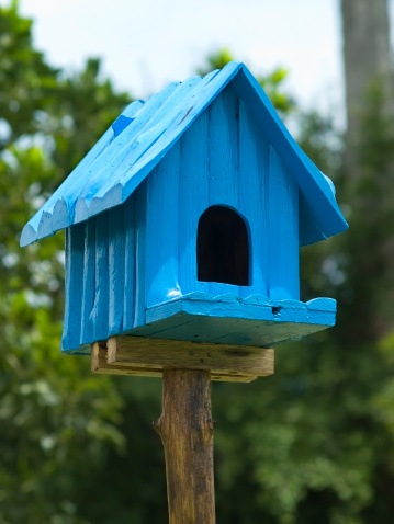 call 811 before installing a birdhouse