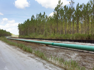 With projects like the Cypress Creek Extension, we're helping communities grow with the help of natural gas infrastructure.